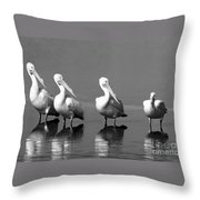 Four White Pelicans In A Funny Pose Throw Pillow