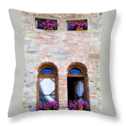 Four Windows Throw Pillow