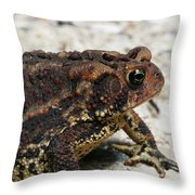Fowler's Toad #2 Throw Pillow