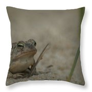 Fowlers Toad Throw Pillow