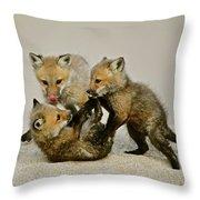 Fox Cubs At Play II Throw Pillow