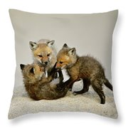 Fox Cubs At Play Throw Pillow