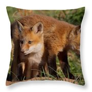 Fox Cubs Playing Throw Pillow by William Jobes