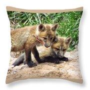 Fox Feather Play Throw Pillow