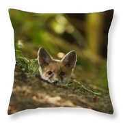 Fox Hole Throw Pillow