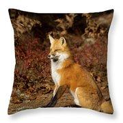 Fox In The Fall Throw Pillow
