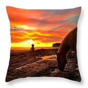 Fox In The Tidepools Throw Pillow