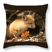 Fox Kit At Entrance To Den Throw Pillow