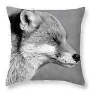 Fox - Mono Throw Pillow