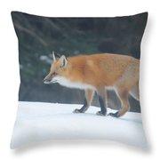 Fox On The Prowl Throw Pillow