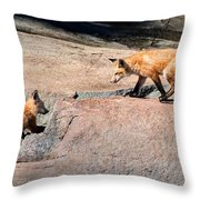 Red Fox Playtime Throw Pillow