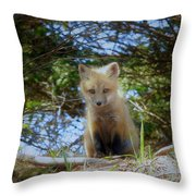 Fox Pup112 Throw Pillow