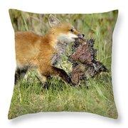 Fox With Dinner Throw Pillow