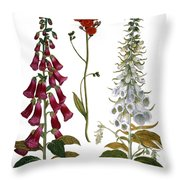 Foxglove And Hawkweed Throw Pillow