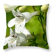 Foxglove Beardtongue - Penstemon Digitalis Throw Pillow
