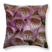 Foxglove Upclose Throw Pillow