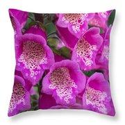 Foxgloves 1 Throw Pillow