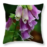 Foxgloves In The Rain Throw Pillow