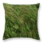 Foxtail Barley - Salisbury Potrero Throw Pillow