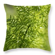 Foxtail Fern In Spring Throw Pillow
