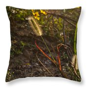 Foxtail Glowing In Sun Throw Pillow