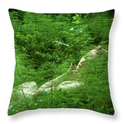 foxtail IV Throw Pillow