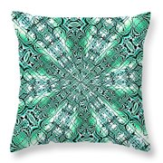 Fractalia  Berdinia Catus  1 No.2 H B Throw Pillow