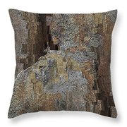 Fracture Frenzy Throw Pillow