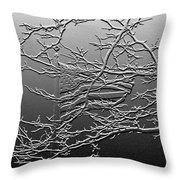 Fractured America Throw Pillow