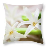 Fragile And Delicate  Throw Pillow