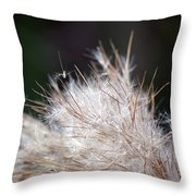 Fragile Seeds Throw Pillow