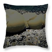 Fragile Waters Throw Pillow