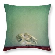 Fragility Throw Pillow