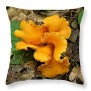 Fragrant Chanterelle Mushroom Throw Pillow