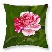 Fragrant Pink Throw Pillow