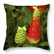 Fragrant Red Throw Pillow by Carolyn Marshall