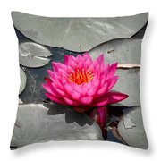 Fragrant Water Lily Throw Pillow