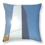 Framed And Photographed Throw Pillow