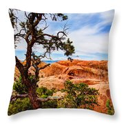 Framed Arch Throw Pillow by Chad Dutson