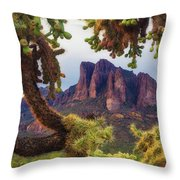 Framed By Cholla Throw Pillow