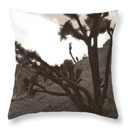 Framed By The Branches Throw Pillow
