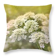 Framed Cow Parsley Throw Pillow