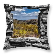 Framed In Black And White Throw Pillow