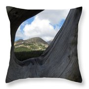 Framed In Wood Throw Pillow