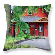 Framed In Indiana Throw Pillow