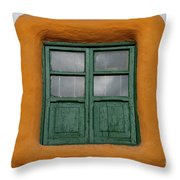 Framed Window Throw Pillow