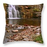 France Park Falls Throw Pillow