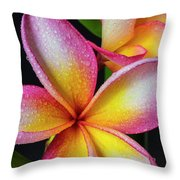 Frangipani After The Rain Throw Pillow