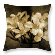 Frangipani In Sepia Throw Pillow