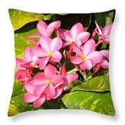 Frangipanis In Bloom Throw Pillow